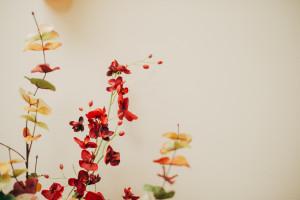 Flowers in Keystone Dentistry